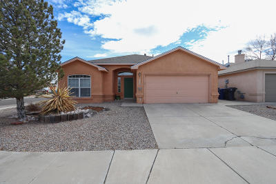 Albuquerque Single Family Home For Sale: 6100 Summer Night Place NW