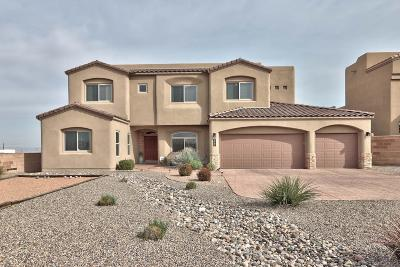 Albuquerque Single Family Home For Sale: 8501 Modesto Avenue NE
