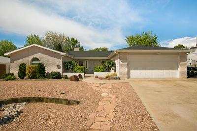 Albuquerque Single Family Home For Sale: 6609 Luella Anne Drive NE