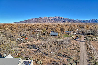 Residential Lots & Land For Sale: Bosque Acres Lot: 2