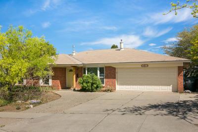 Albuquerque Single Family Home For Sale: 14317 Grand Avenue NE
