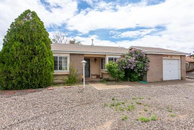 Rio Rancho Single Family Home For Sale: 873 El Morro Drive SE
