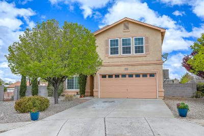 Rio Rancho Single Family Home For Sale: 700 Ocate Meadows Drive NE