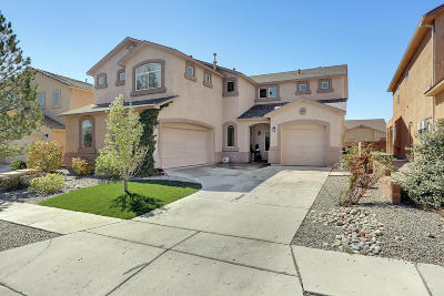 Albuquerque NM Single Family Home For Sale: $305,000