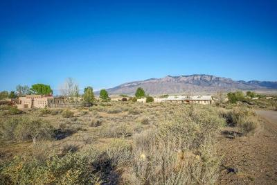 Corrales Residential Lots & Land For Sale: Lot 74 Sagebrush Drive
