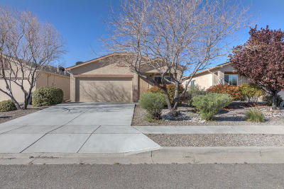 Rio Rancho Single Family Home For Sale: 1000 Saw Mill Road NE