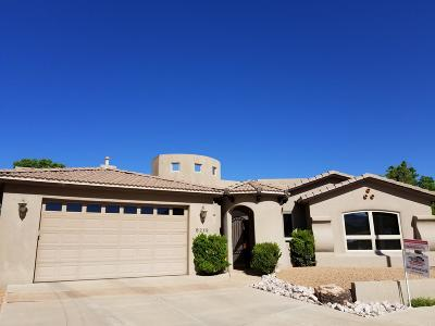Albuquerque NM Single Family Home For Sale: $599,900