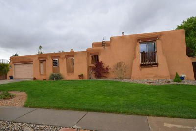 Albuquerque Single Family Home For Sale: 9316 Farragut Drive NE