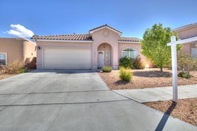 Albuquerque, Rio Rancho Single Family Home For Sale: 9332 Silica Avenue NW