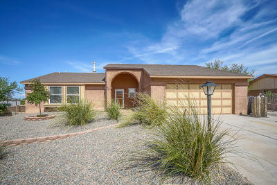 Rio Rancho Single Family Home For Sale: 568 Christine Drive NE