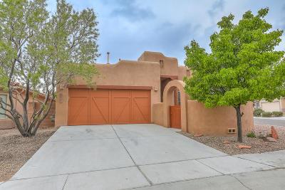 Placitas, Bernalillo Single Family Home For Sale: 1243 San Miguel Street NW