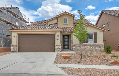 Bernalillo County Single Family Home For Sale: 6616 Yawkey Way NE