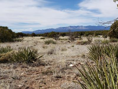 Torrance County Residential Lots & Land For Sale: 733 Jumano Trail