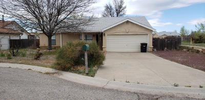 Los Lunas Single Family Home For Sale: 20 Timothy Court