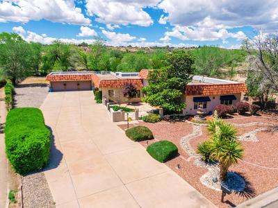 Albuquerque Single Family Home For Sale: 3313 La Mancha Drive NW