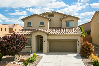 Albuquerque Single Family Home For Sale: 8408 Chilte Pine Road NW