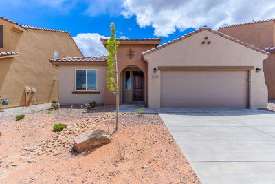 Rio Rancho Single Family Home For Sale: 7024 Lookout Road NE