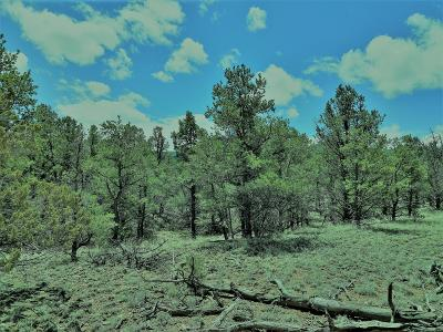 Catron County Residential Lots & Land For Sale: Tee Pee Trail