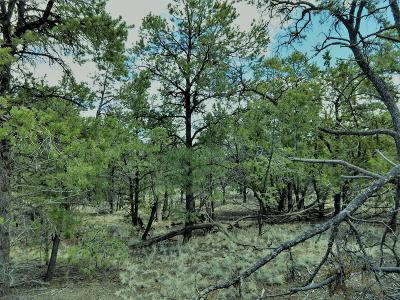Catron County Residential Lots & Land For Sale: Wilderness Lane