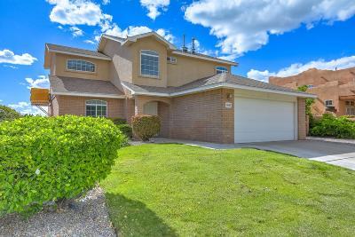 Single Family Home For Sale: 8615 Tierra Alegre Drive NE