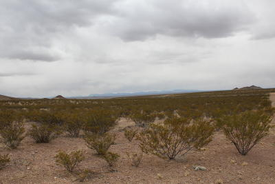 Socorro County Residential Lots & Land For Sale: Santa Fe Trail Lane