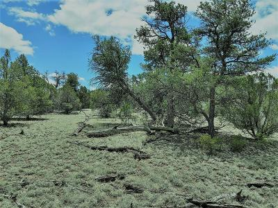 Catron County Residential Lots & Land For Sale: Last Frontier Trail