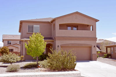 Rio Rancho Single Family Home For Sale: 2706 Camacho Road SE