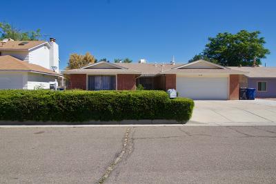 Albuquerque Single Family Home For Sale: 6133 Flor De Mayo Place NW
