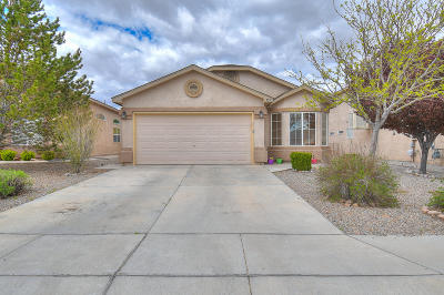 Rio Rancho Single Family Home For Sale: 353 Soothing Meadows Drive NE