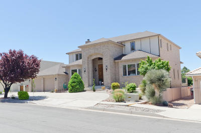 Albuquerque Single Family Home For Sale: 1015 Daskalos Drive NE