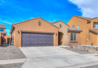 Rio Rancho Single Family Home For Sale: 7023 Overview Road NE