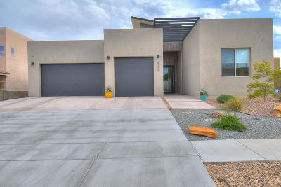 Single Family Home For Sale: 6340 Pima Place NW