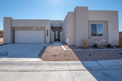 Albuquerque Single Family Home For Sale: 9205 Desert Ridge Pointe Court NE