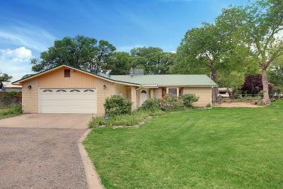 Single Family Home For Sale: 6659 Isleta Boulevard SW