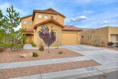 Albuquerque Single Family Home For Sale: 10804 Chaco Terrace Street NW