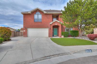 Albuquerque Single Family Home For Sale: 6919 La Lucena Avenue NE