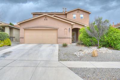 Rio Rancho Single Family Home For Sale: 2211 Montevine Avenue SE