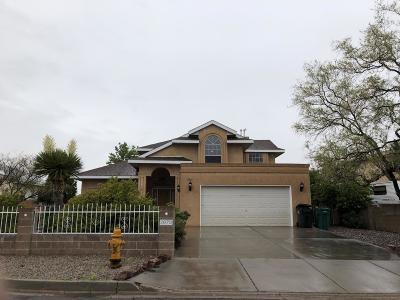 Rio Rancho Single Family Home For Sale: 2879 Seven Falls Drive SE