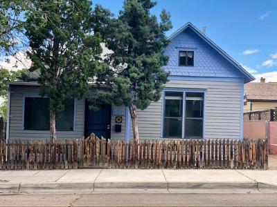 Single Family Home For Sale: 517 Coal Avenue SE