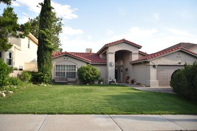 Albuquerque Single Family Home For Sale: 7724 Eagle Rock Avenue