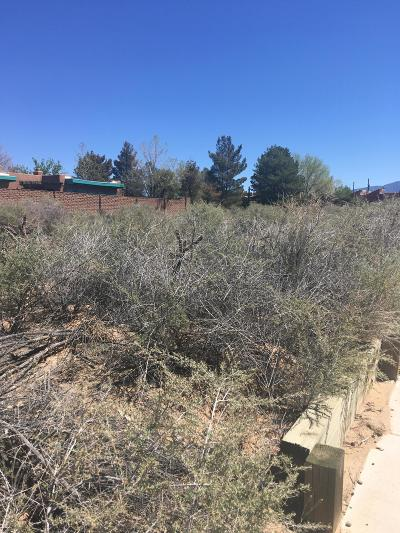 Rio Rancho Residential Lots & Land For Sale: 3101 19th Avenue SE