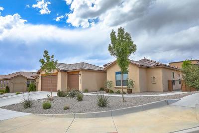 Rio Rancho Single Family Home For Sale: 2835 Sicomoro Lane SE