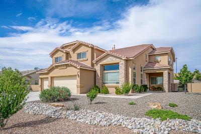 Rio Rancho Single Family Home For Sale: 4324 Bentgrass Meadow Drive NE
