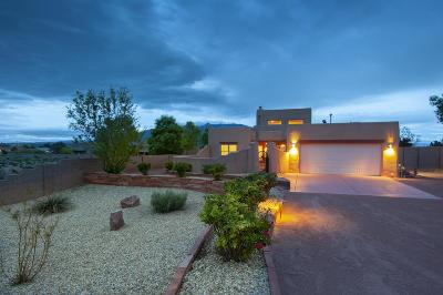 Rio Rancho Single Family Home For Sale: 1560 Chihuahua Road NE