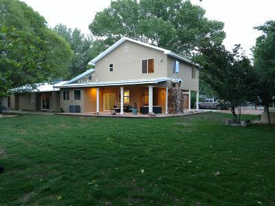 Albuquerque Single Family Home For Sale: 9913 Loretta Drive NW