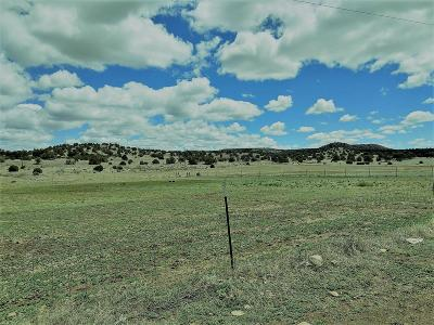 Farm & Ranch For Sale: 39-A W. Old Thomas Ranch Road