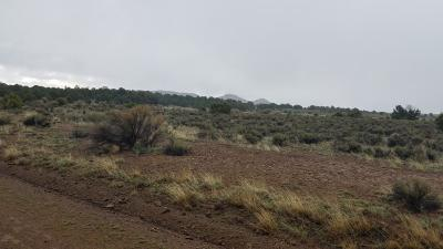Catron County Residential Lots & Land For Sale: Lot 135 Blue Hills Ranch