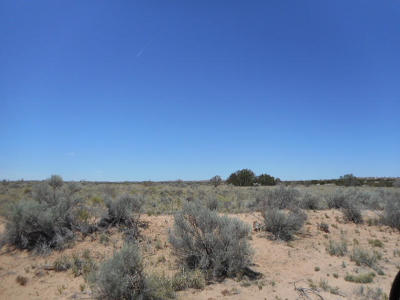 Rio Rancho Residential Lots & Land For Sale: Balsa Rd(U-12, B-40a, L-40) NW