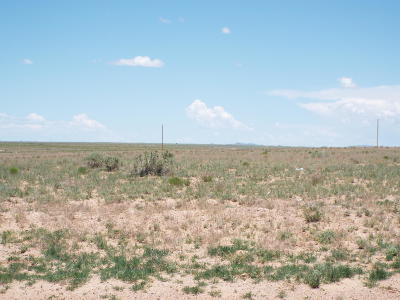 Valencia County Residential Lots & Land For Sale: Lot 325 Rancho Rio Grande