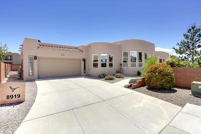 Albuquerque Single Family Home For Sale: 8919 Cuevita Oeste Drive